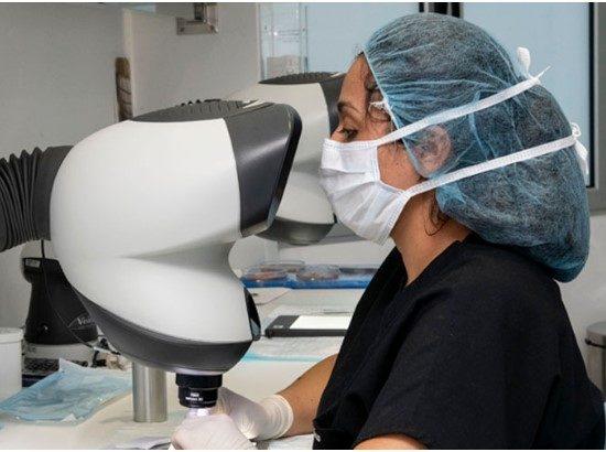 CapMédica clínica Avanzada del Pelo