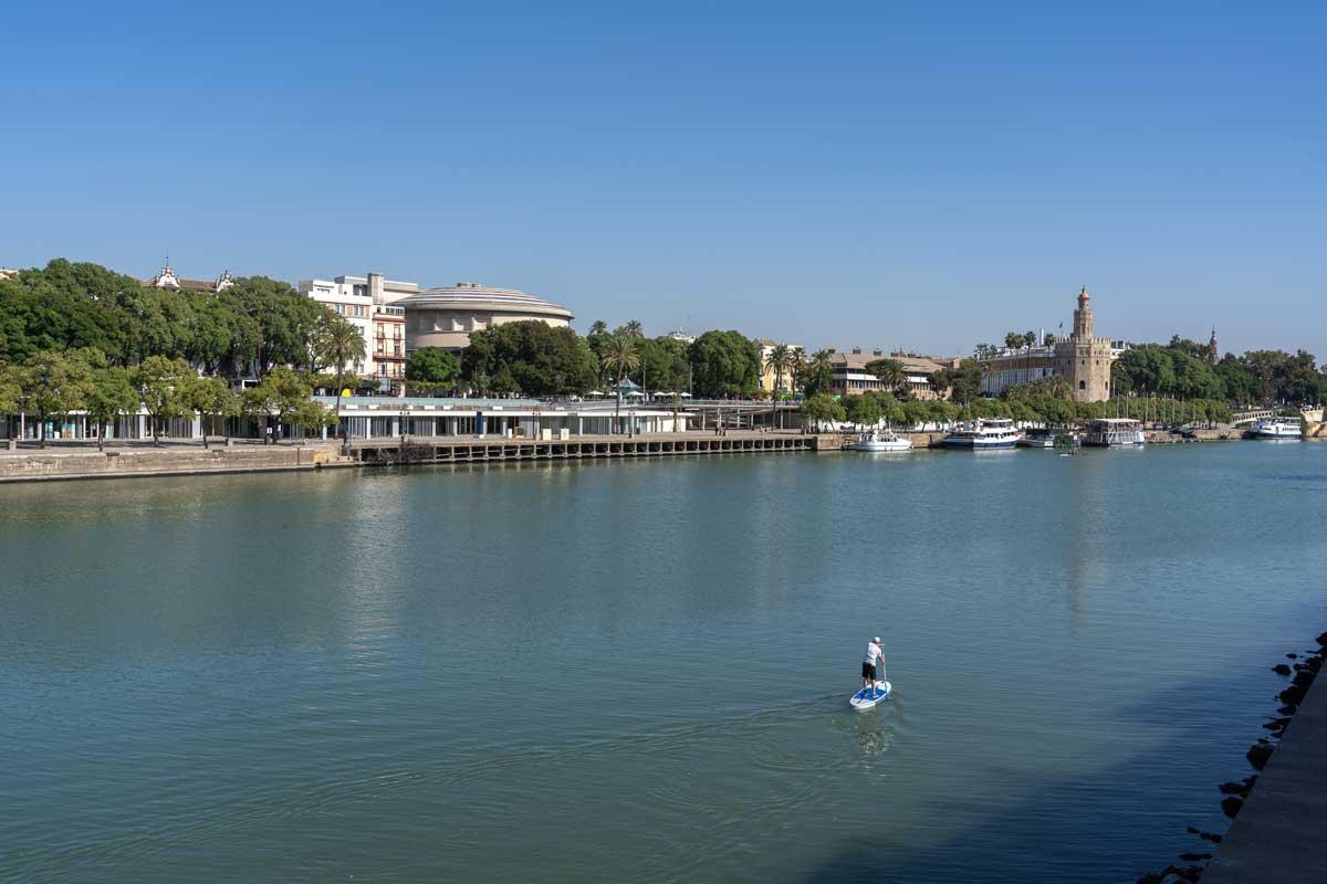 Injerto capilar en Sevilla